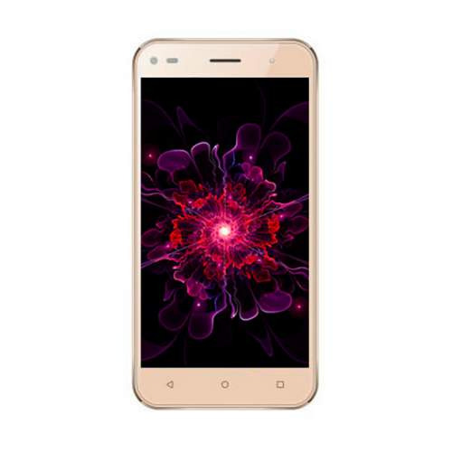 Смартфон NOMI i5030 EVO X Full-Gold